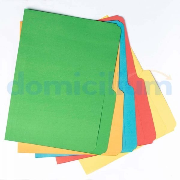Folder AMPO color surtido carta caja 125